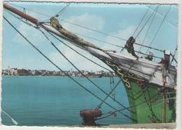 Cpsm Tripoli - Vue Prise De La Mer - Libya