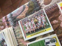 Panini Calciatori 2001/02 FIORENZUELA - Altre Collezioni