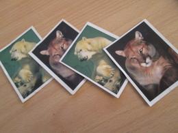 LOT DE 4 IMAGES PUBLICITAIRES PAPY BROSSARD LES ANIMAUX DU MONDE EN VOIE DE DISPARITION - Other