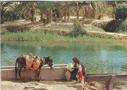 Tunesia - Gabes: L`oasis.   Sent To Denmark    # 07437 - Tunesië