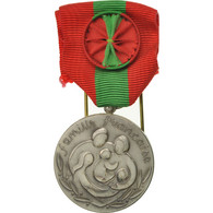 France, Famille Française, Médaille, Excellent Quality, Silvered Bronze, 33 - Militaria