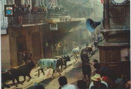 Bulls In The Street.  Pamplona.  # 07442 - Stieren