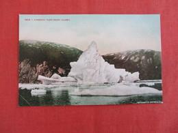 Iceberg  Taku Inlet  Alaska   -ref 2930 - United States