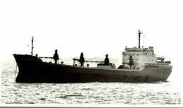 FELEAC  14 * 8.5  CM Bateau, Barco,  Bateaux,  Rumania Romania Rumänien Roumanie - Barcos