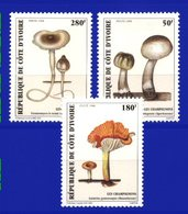 YVORY COAST, 1998, FLORA, MUSHROOMS, YV#999-1001, MNH - Ivory Coast (1960-...)