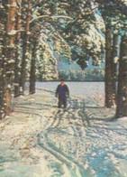 URSS 1975. Carte Postale, Entier Pour L'intérieur. Timbre 3 à Kop. Ski De Fond (inland Postal Stationery) - Skiing