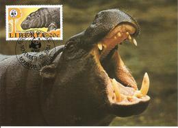 1984 - LIBERIA Monrovia - Pygmy Hippopotamus -  Hippopotame Nain - Liberia
