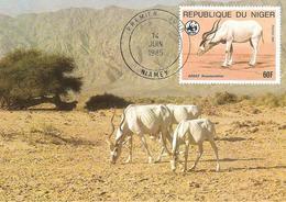 1985 - NIGER Niamey - Scimitar Horned Oryx - Niger