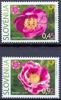 SI 2010-846-7 FLORA, SLOVENIA, 2v, MNH - Slowenien