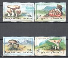 Lesotho 1982 Yvert 533-36, Mushrooms - MNH - Lesotho (1966-...)