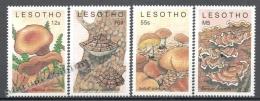 Lesotho 1989 Yvert 852-55, Mushrooms - MNH - Lesotho (1966-...)