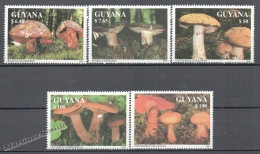 Guyana 1991 Michel 3680-84, Mushrooms - MNH - Guyana (1966-...)