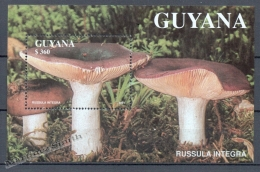 Guyana 1991 Michel BL 142, Mushrooms - Miniature Sheet - MNH - Guyana (1966-...)
