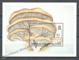 Virgin Islands - Islas Virgenes 1991 Yvert BF 72, Mushrooms - Miniature Sheet - MNH - British Virgin Islands