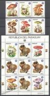 Paraguay 1985 Yvert 2144-50, Mushrooms - MNH - Paraguay