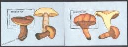 Bhutan - Bhoutan 1989 Yvert BF 179-80, Mushrooms - Miniature Sheets - MNH - Bhutan