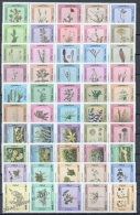 Kuwait 1983 Yvert 927-76, Flowers & Plants Of The Desert - MNH - Kuwait
