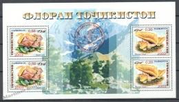 Tajikistan -  Tadjikistan 2004 Yvert BF 34,  Mushrooms - Miniature Sheet - MNH - Tayikistán