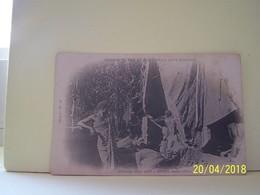 ABIDJAN (COTE D'IVOIRE) CHEMIN DE FER ET PORT DE LA COTE D'IVOIRE. ABATTAGE D'UN ARBRE. MARS 1904. - Ivory Coast