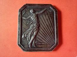 SUPERBE MÉDAILLE RECTANGULAIRE BRONZE Argenté 1931 VALENCAY Belle Patine GRAVEUR à Identifier  52 X 63 Mm 96.77 Grammes - Altri