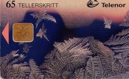 TARJETA TELEFONICA DE NORUEGA. N-111 (007) - Norway