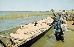 MALI SOUDAN FRANCAIS Berger Du Mali Prepare A Traverser Le NIger Avec Son Troupeau 12(scan Recto-verso) MA215 - Sudan