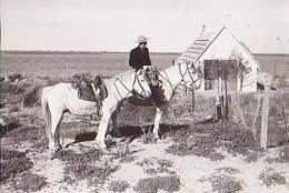 Cheval    H69           En Camargue ( Le Gardian Et Ses Chevaux ) - Cavalli
