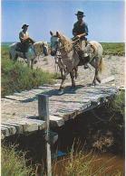 Cheval    H71           Camargue. Gardians à Cheval - Pferde