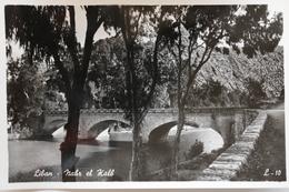 Liban Vers 1950 Nahr El Kalb - Liban