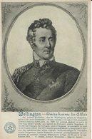WELLINGTON-PRINCE DE WATERLOO-NAPOLEON-EMPIRE - Histoire