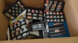 Super Carton Dont N° 257A**, 321 ** + Bons Timbres France ** + Albums + Revues Philatéliques.Voir Commentaires !!! - Stamps