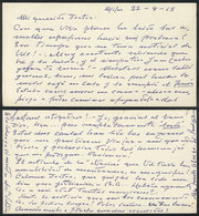 610 ARGENTINA: PANIZZA Hector: Composer And Conductor, Manuscript Letter Written In 1965 - Autographs