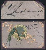 629 ARGENTINA: UDAONDO Guillermo, Governor Of Buenos Aires In 1894-1898, His Autograph On - Autographs