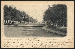 844 ECUADOR: GUAYAQUIL: Olmedo Avenue, Circa 1902, Ed.Grito Del Pueblo, Light Staining. - Ecuador