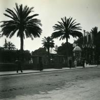 France Nice Avenue Massena Jardin Public Ancienne Photo Stereo Amateur Possemiers 1900 - Stereoscopic