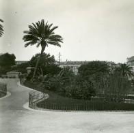 France Nice Jardin Public Montée Vers La Terrasse Ancienne Photo Stereo Amateur Possemiers 1900 - Stereoscopic