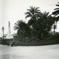 France Nice Jardin Public Yucca Ancienne Photo Stereo Amateur Possemiers 1900 - Stereoscopic