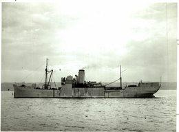 HMS FIDELITY EX LERHIN    21 * 27 Cm Navio De Guerra - Warship -  Kriegsschiff  GUERRE - Barcos