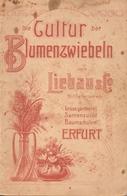 Catalogue Liebau & Co Erfurt Die Cultur Der Blumenzwiebeln - Catalogues