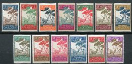 6570   NOUVELLE CALEDONIE   Taxe  N° 26/38*/(*)      1944    B/TB - New Caledonia