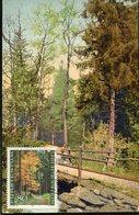33057 Liechtenstein, Maximum  1988 Showing Forest With Trees (vintage Card) - Bäume