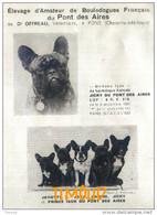 ELEVAGE DU PONT DES AIRES / BOULEDOGUES FRANCAIS  / Dr. OFFREAU / PONS / CHARENTE MARITIME / PUB 1936 - Unclassified
