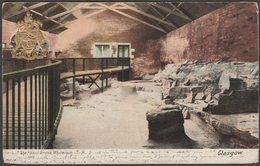 The Fossil Grove, Whiteinch, Glasgow, 1906 - Hartmann Postcard - Lanarkshire / Glasgow