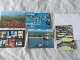 Lot De 5 Cartes Postales Des Dom Tom Martinique Ile Maurice Ou Réunion - Cartoline