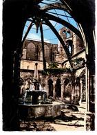 Environs De Saint Pargoire - Abbaye De Valmagne - La Fontaine - France