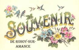 52 - HAUTE MARNE / Fantaisie Moderne - CPM - Format 9 X 14 Cm - 523395 - Rosoy Sur Amance - Frankreich