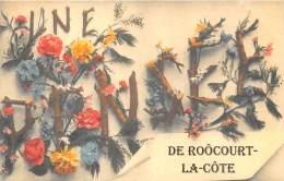 52 - HAUTE MARNE / Fantaisie Moderne - CPM - Format 9 X 14 Cm - 523396 - Roôcourt La Côte - Frankreich