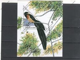 BENI Nº HB 60 - Sperlingsvögel & Singvögel