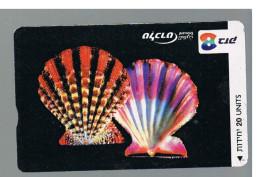 ISRAELE (ISRAEL) -   2002 SHELLS: GLORIPALLIUM MACULOSUM  - USED  -  RIF. 10882 - Israele