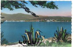 DEPT 83 : édit. S E P T N° 65-51 : Saint Tropez Vue Sur Sainte Maxime Et De Golf De St Tropez - Saint-Tropez